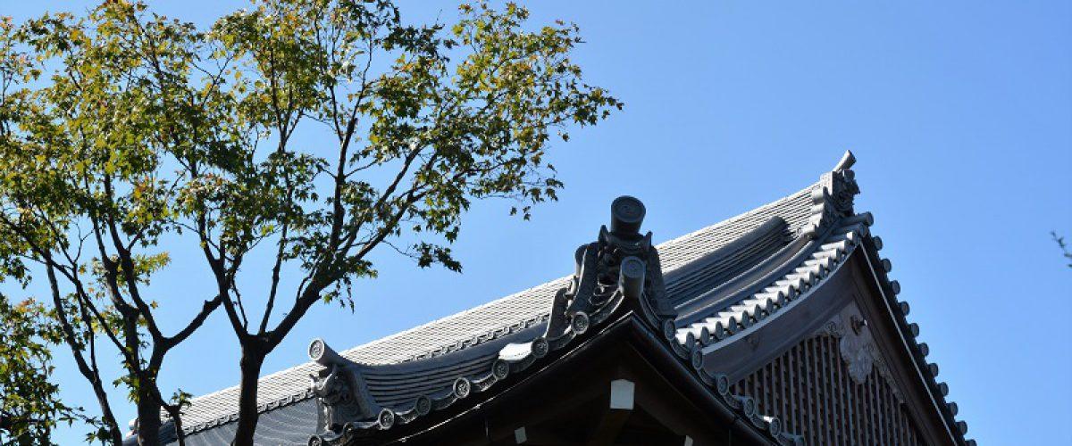 写真撮影者:山田 章
